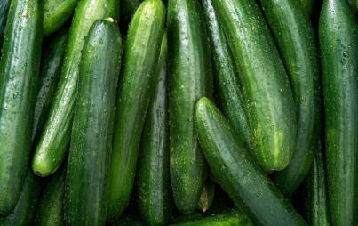 These cucumbers are a euphemism! Or a sex toy all on their own — your choice!